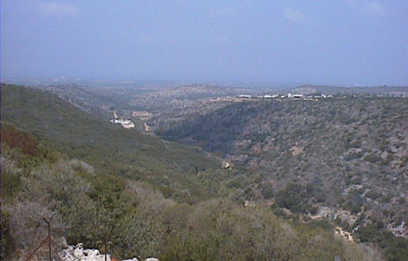 """Evolution Canyon"" II at Nahal Keziv, Upper Galilee"